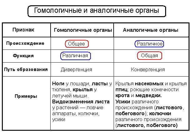 состав субъектов рф их правовой статус