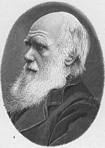Дарвинизм и СТЭ