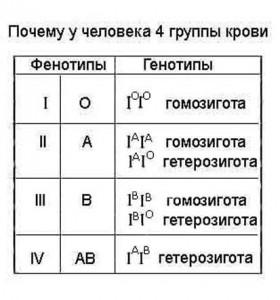 Давайте разделять группы крови по системе АВО, резус-фактору и системе MN