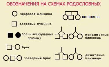 Генетический анализ родословных