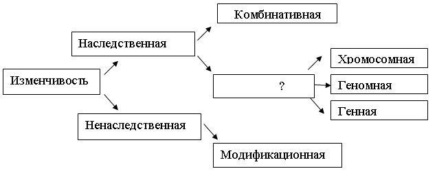Таблица форм изменчивости