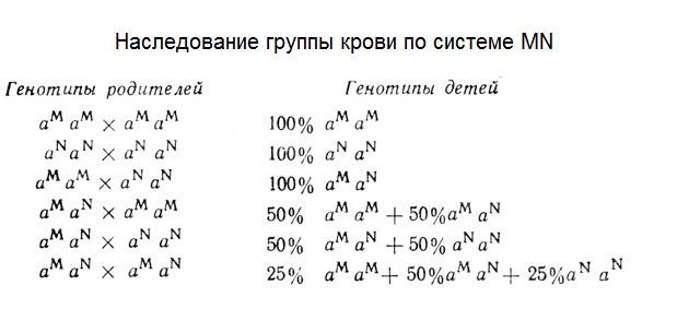 Решение задач генетика групп крови объем пирамиды задачи из егэ с решением